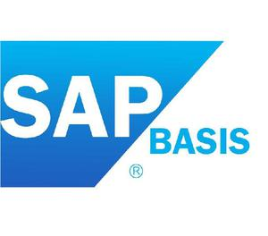 Want to Learn Networking Basics, SAP Basis, Advance Network