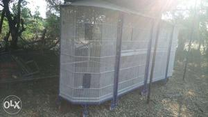 Birds cage for farm house and factory