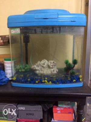 Fish aquarium with oxygen machine in a very gud