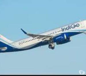 Ground Staff interview in Air India | Job Notification