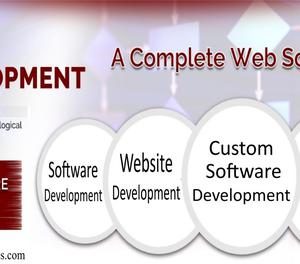 Software and Website Development Company in Faridabad