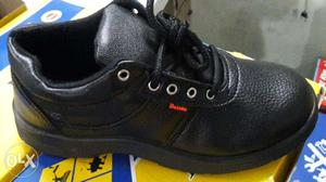 Safety shoes for. ALL Kind of Industries job work