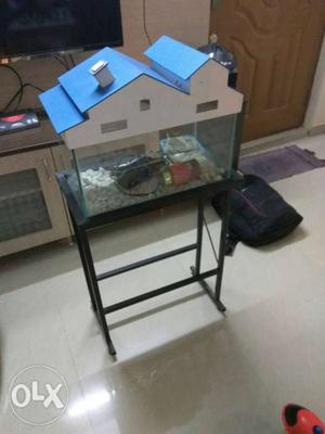 Fish tank for sale with stones and water refresher, net