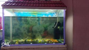 Fish tank 2ft 1 pair fish power filter oxygen