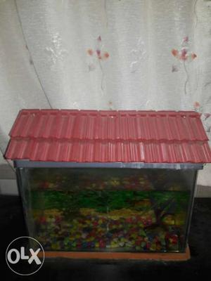 1 Year use Fish tank...With Two Fish Tank Size ""