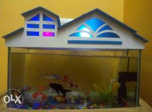 5 month old Fish tank for sales.. Fish tank is