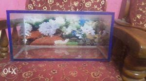 Asalamualikum fishes for sell total 8 to 10