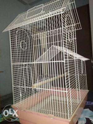 It is a 6 month old.It is a large cage for
