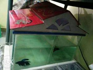 Fish tank at just rs450. center plate will be
