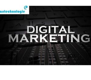 Digital Marketing Services in Chandigarh - Antechnologie