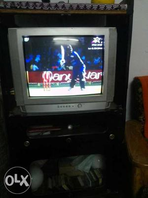 Samsung TV in running condition with TV trali