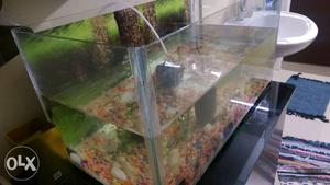 Fish Water tank with oxygen kit for sale Good