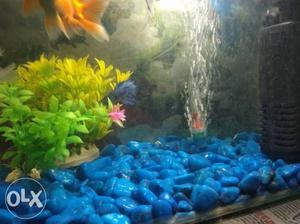Blue Stone Fish Tank Decor Lot