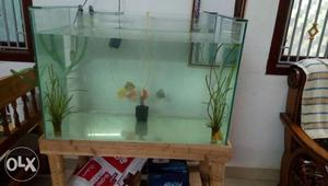 Fish tank cleaning and setting services at low
