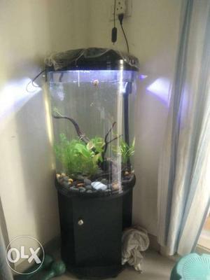 Inbuilt overhead filter with light. bought 5 days
