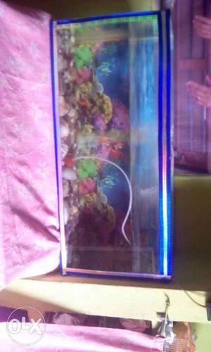 Rectangular Blue Fish Tank