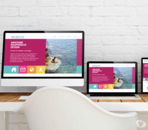 Web Designing Services in Bhopal, Madhya Pradesh - MaMITs
