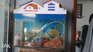 1.5ft Fish Tank Good Condition 1 kg Stone 1
