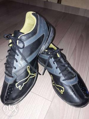 Grab this in cheap...original puma shoes rarly used.size 10