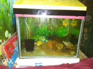 1'ft... Long Aquarium for Small and medium size
