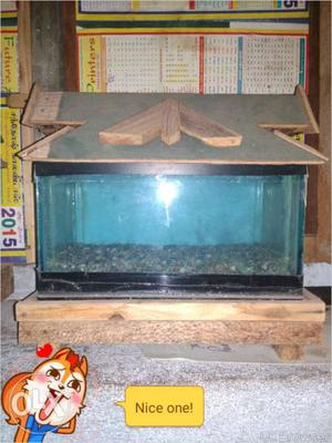 2 Small fish tank with top. each tank 200