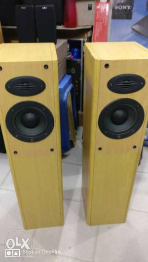 Celestion England 2 Way Tower Speakers