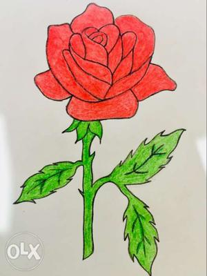 Drawing Of Red Rose Flower