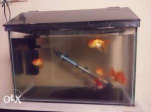 Fish tank with side table for sale at cheap price