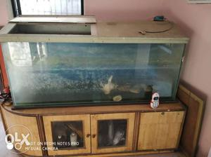 Fish tank 5.6 feet with galvanised roof top with