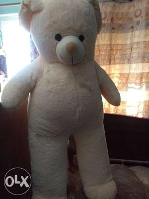 Big size Teddy unused and clean. received as a