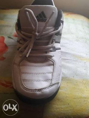 New shoes Adidas size 8.5