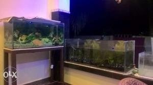 3 aquarium with wood stand,eight,o,eight,six