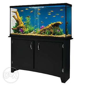 Aquarium made by order at cheapest rate any size