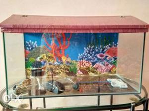 Fish tank,Oxygen machine, Fish Net, Tube light