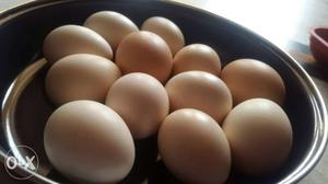 Fresh and pure Orgenic Eggs at your door step