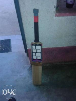 The real SS bat with a free bat cover. Only 6 months old.