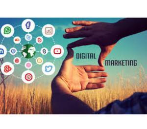 Digifish3 – Complete Digital Marketing Agency Gurgaon