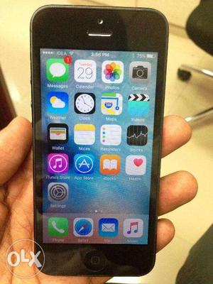 Apple iPhone 5 16GB Black at Reasonable Price Grab the Deal