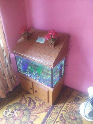 Aquarium size 2ft by 1ft by hight 1ft 2inch and
