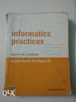 Informatics Practices By Sumita Arora Book
