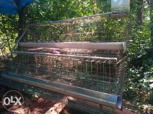 Rectangular Gray Chicken Coop