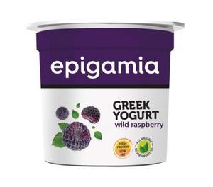 Greek Yogurt at Wholesale Supplier in Mumbai Mumbai