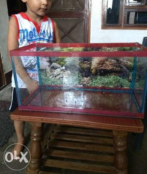 Aquarium best for office table 2month old size