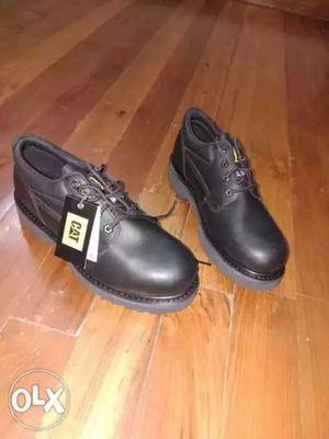 "Brand new Men's ""Caterpillar"" Shoes for Sale. An"