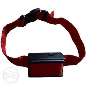 Dog,Cat, Electronic sefty Belt available for all