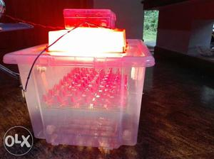 Egg Incubator, Fully Automatic, humidity Meter