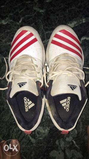 Original addidas cricket shoes in good condition
