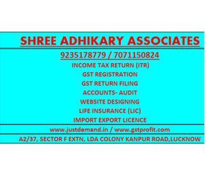 GST Consultant, GST Registration, GST Return Filing, Income