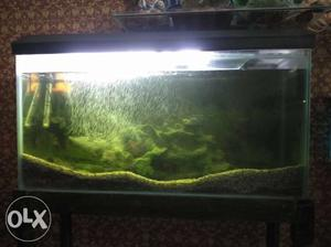 Total aquarium set with top filter, stand, n top