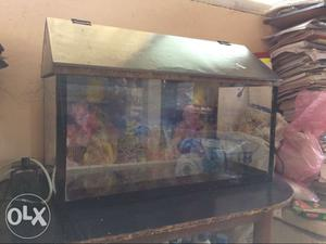 2 by 1 by 1 fishtank for sell new tank with cap n